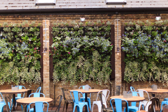 The garden at The Avalon in Clapham South, London. Beer Garden Co.