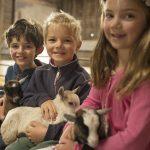 Children with baby pygmy kids 3