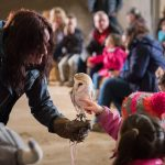 The-Olde-House_Falconry-1