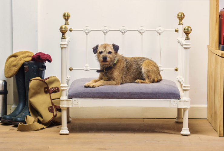 Bespoke dog beds designed and made by the Cornish Bed Company. Steven Haywood