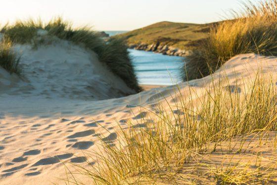 Crantock beach Mike Searle