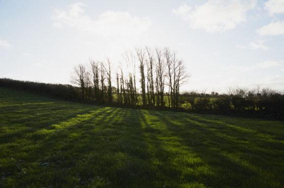 Trefresa Farm – a beautiful, secluded spot for Porthilly Spirit Lulu Ash