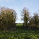 Porthilly Spirit – Trefresa Farm