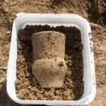 The beaker found at Halwyn Meadows.