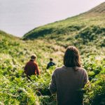 Foraging the unique plant blend for Pentire